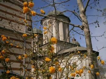 Biserica Radu Voda